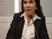 Presidente da Comissão da Mulher Advogada divulga dados sobre violência doméstica